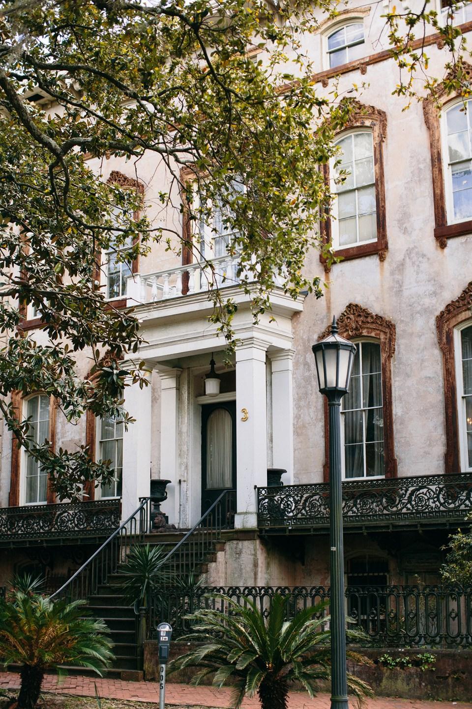 Savannah by Meredith Perdue