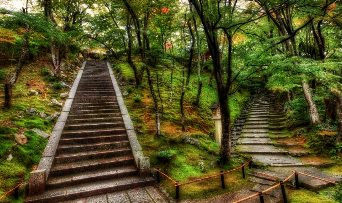 how_to_make_impossible_decisions_two_paths_trey_ratcliff