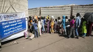 UNHCR dismisses allegations on abduction, forced return of Eritrean refugees