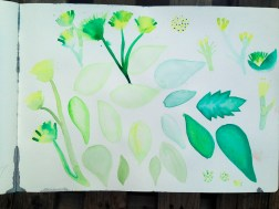 journaling   testing brushes, tones, tints, shades and brushes with some leaves and a few flowers   17x12