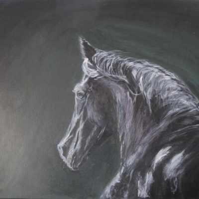 peinture cheval au nom de Tornado