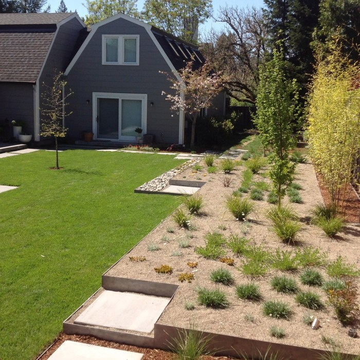 Santa Rosa Backyard Renovation