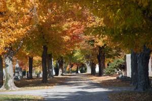 otoño-1369806_62520496