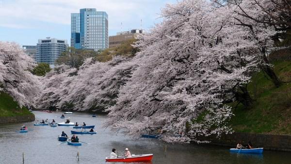 Giappone barca