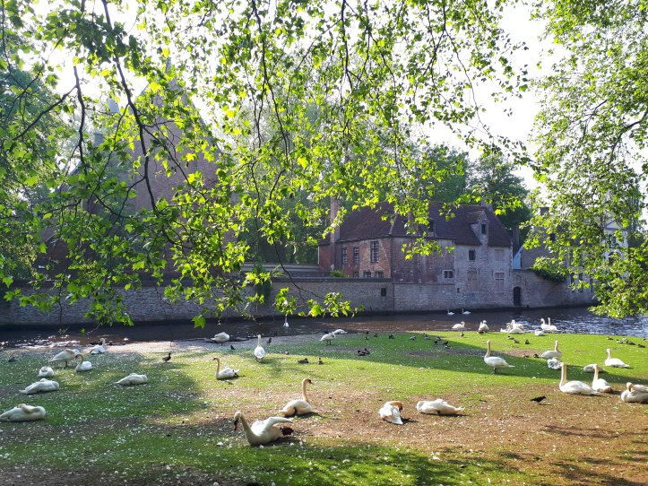 Minnewater - Bruges - 2