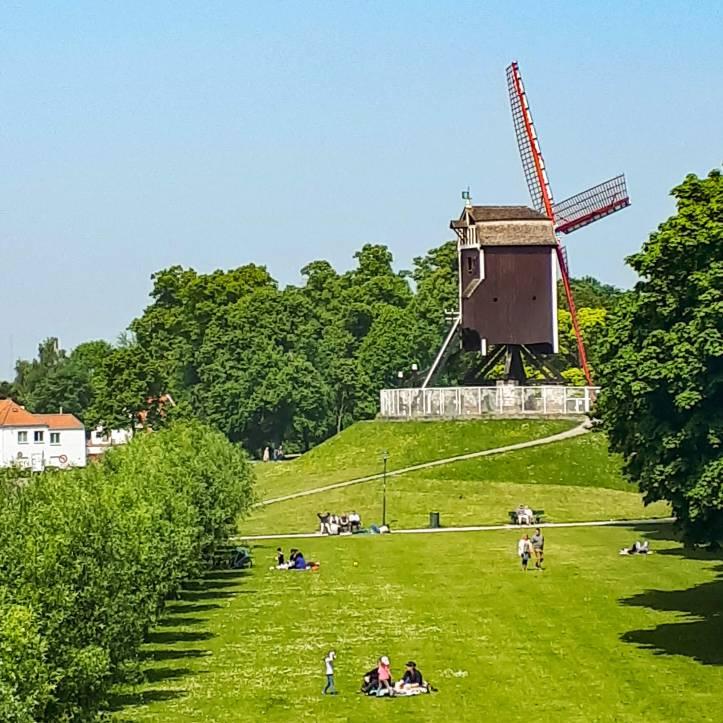 Mulini di Bruges - 2