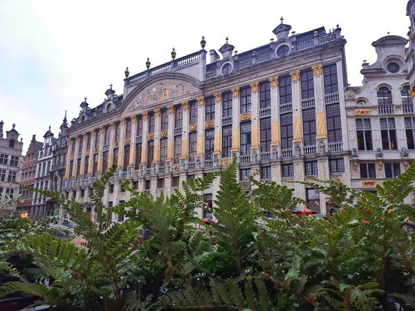 Grand Place - Bruxelles - architettura - 2.jpeg