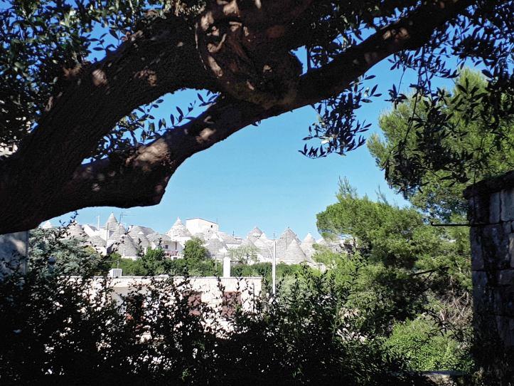 Trulli Rione Monti - Alberobello - 2.jpeg