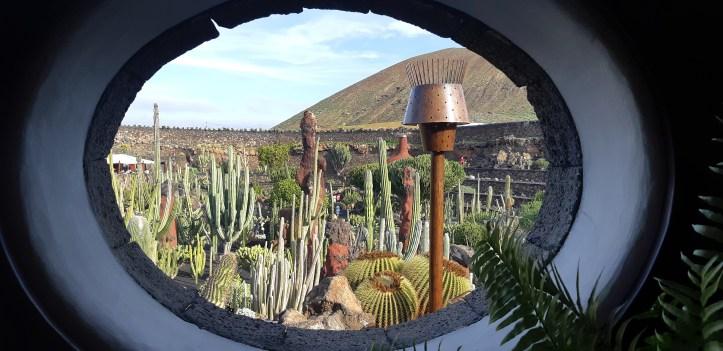 Lanzarote _ Jardin de Cactus_21.jpeg