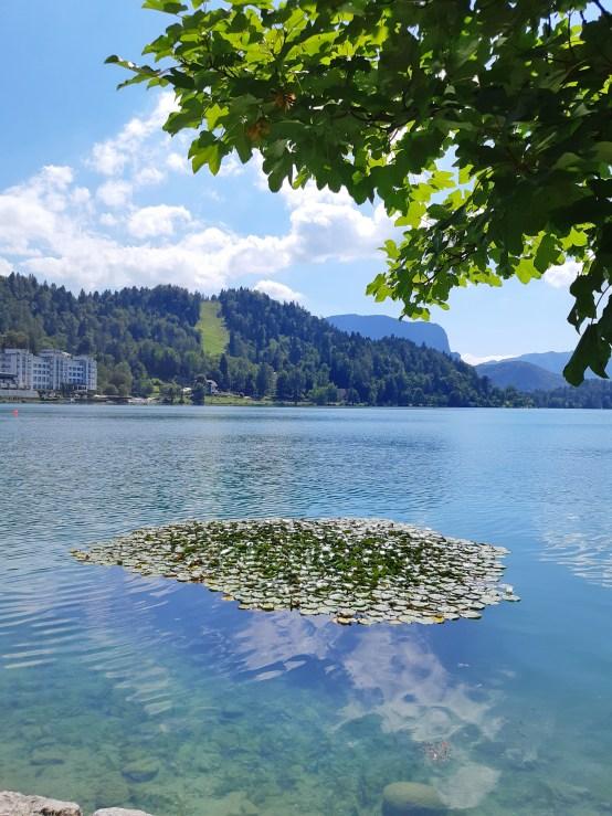 Lago di Bled - 24.jpeg