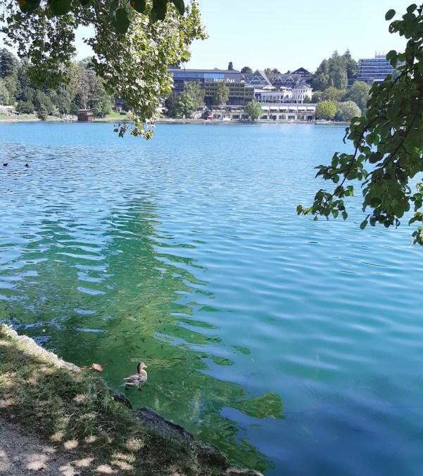 Lago di Bled - 14.jpeg