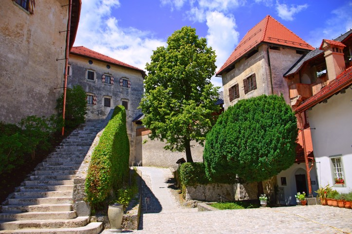castello di Bled.jpg