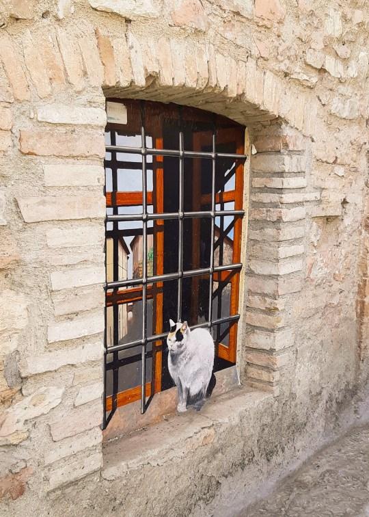 Assisi città San Francesco Umbria-5.jpg