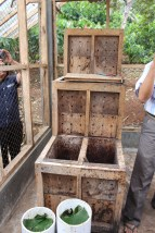 The cacao bean fermenter