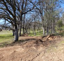 new berms on Culvert
