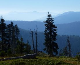 Desolation Wilderness in distance from Little Bald Mtn.