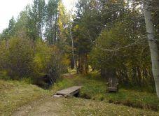 Alder Creek Trail