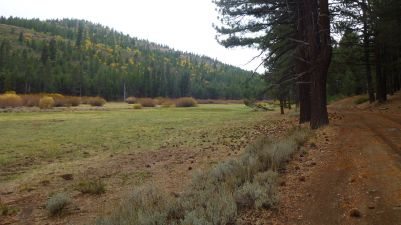 Henness Pass Road meadow