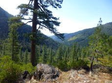 Lavezolla Creek Trail view towards Downieville.