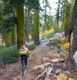 Sean heading down Graeagle Creek Trail