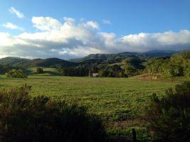 Up Carmel Valley road aways.
