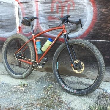 Rohloff 29+ dirtdrop