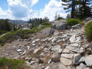 Rock work on the right is the trail (DLRT)