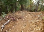WS trail just after Deadwood Cemetery. They fire crews tore it up a bit i would guess for access and to create a bigger fire break.