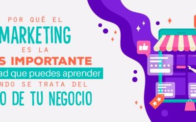 Por qué el Marketing es la MÁS IMPORTANTE habilidad que puedes aprender cuando se trata del Éxito de tu Negocio