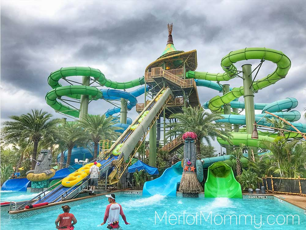 9 Reasons Volcano Bay is Perfect for Tweens and Teens - Taniwa Tubes