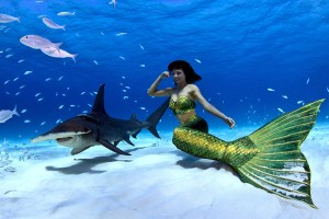 Underwater mermaid model Kat swimming with a hammer head shark in the Bahamas