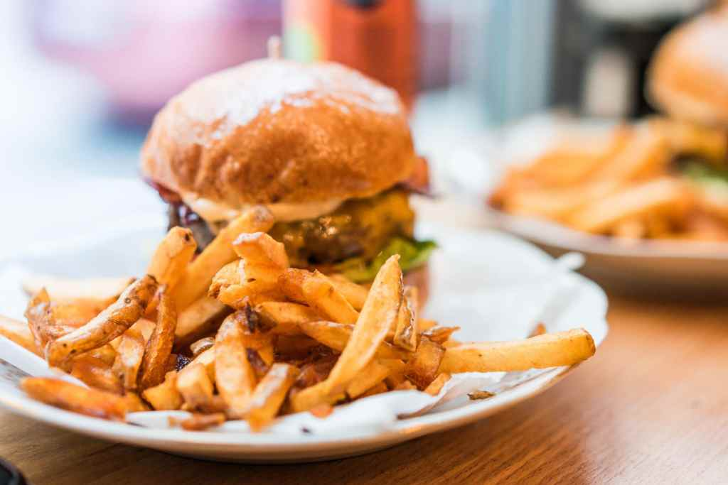 Celebrate national Burger Day with french fries and a bacon cheeseburger