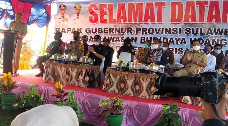 Gubernur Sulsel Hadiri Pesta Panen Udang di Pinrang