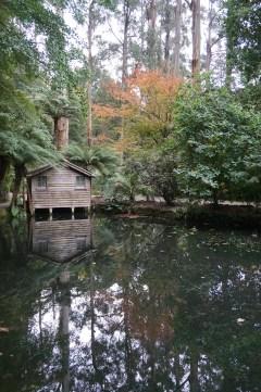 Creepy boat house