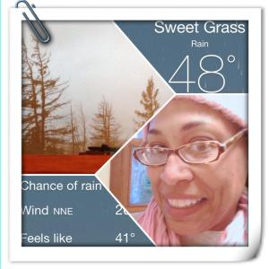 collage of woman, temperature and trees with cold air in the background