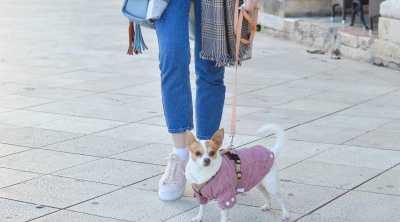 dog-walking-lady