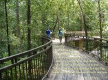 Scripture--Matthew 7:13-14 written on a walking bridge that curves into the woods