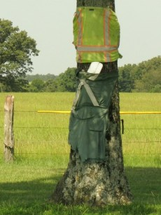 tree wearing safety vest and pants to ward off drunk drivers