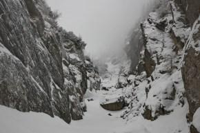 Valea Hornului 2017 (3)