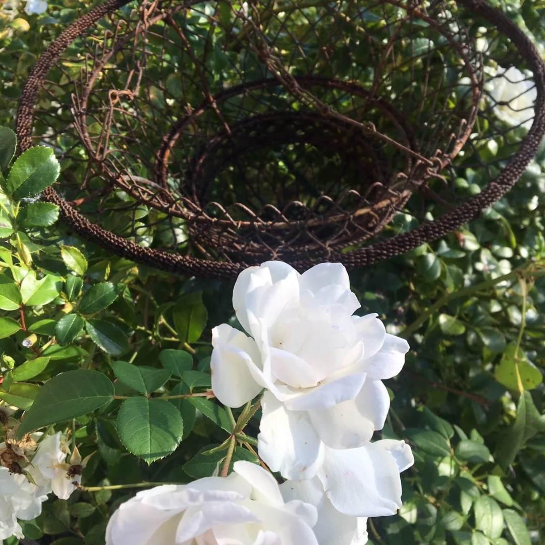 Incroyable-jardinière-suspendue-en-fer-antiquité-chateau-XIXème