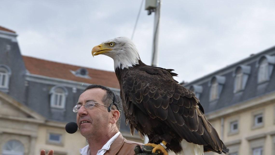 Le Roi de l'Oiseau au Puy-en-Velay