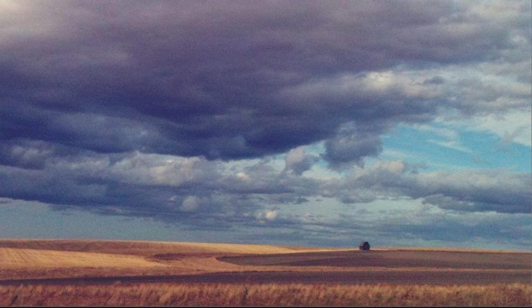 Eastern Washington Fields
