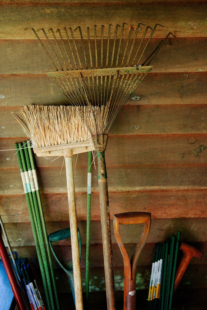 Larry Cameron - W.S. Merwin Rakes and Brooms