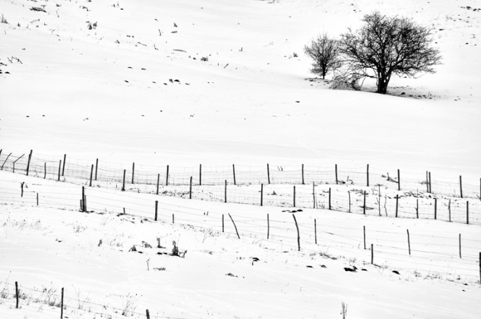 Photo by Gabriele Negri