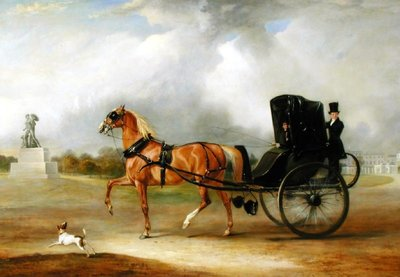 Gentleman in Carriage