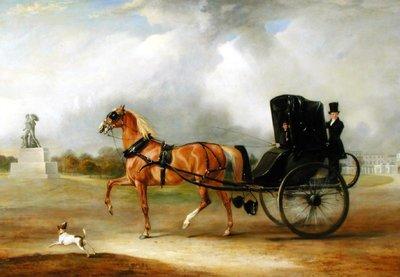 Gentleman in Carriage