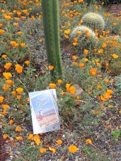 Romping in the California Poppies