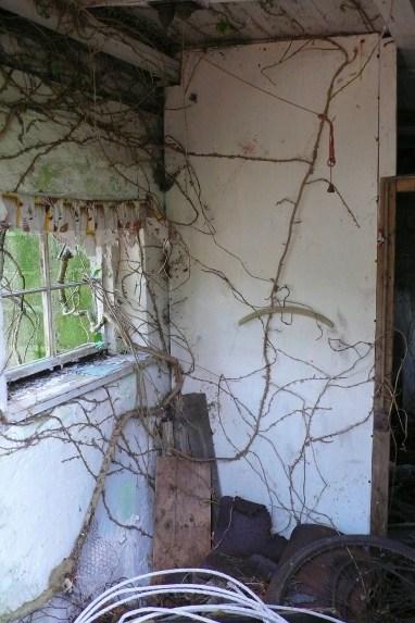 Inside Ivy Cottage, 2007