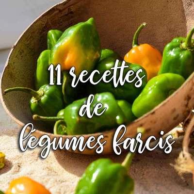 recettes de légumes farcis