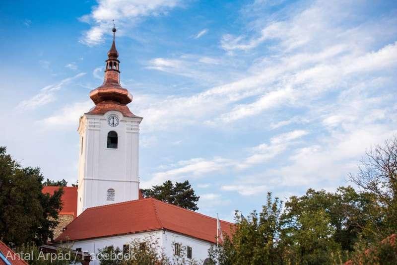Monede şi documente descoperite în timpul lucrărilor de reabilitare a Bisericii Reformată Fortificată din Sfântu Gheorghe